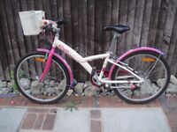Girls BTwin Bike in excellent condition