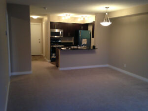 Beautiful 2 bedroom condo for rent in rutherford area