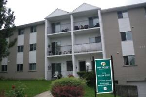 315 Willow Street - Two Bedroom Apartment Apartment for Rent