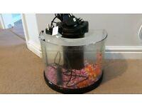 5l semicircle fish tank make an offer