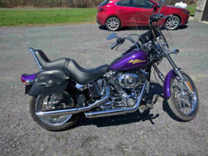 Softail Custom - super low kilometers, just like new....