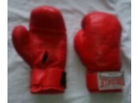 Lonsdale 10oz boxing gloves
