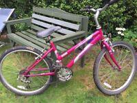 "Girls Rayleigh bike 24"" ready to go"