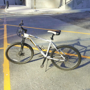 Mountain / Trail Bike in great condition!