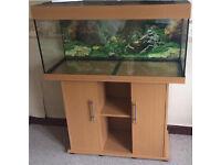 3.5ft aquarium