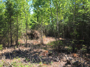 Approved Building Lot-47 Atlantic View Dr,Lawrencetown,Hrm-SALE