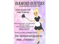 diamond dusters domestic/commercial cleaners
