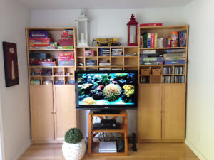 Entertainment/Storage/Shelving Unit