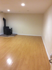 Incredible basement with separate entrance