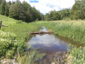Own a significant piece of land 10 min. to Arnprior. 175 Acres