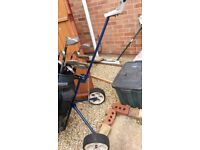 Golf clubs / second hand ....mercury proffessional irons and spalding