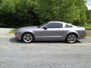 Reduced - 2006 Ford Mustang GT Coupe