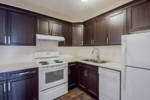 Newly renovated 1 bedroom 1 office condo close to the college
