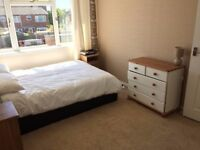 Spacious double room to let in Caversham. £550 per month.