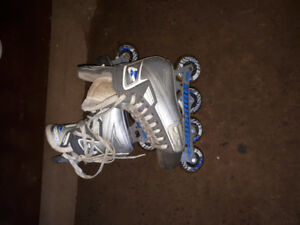 Silver Mission Rollerblades