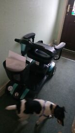 Rascal mobility scooter. Only bought last week. In excellent condition