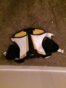 Yellow chest protector