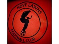 Players Wanted For Men's 11-a-side Hove Based Sunday League Football Team