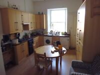 Single room in a quiet flat in Marchmont