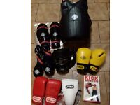 Martial arts sparing kit / boxing gloves protective gear