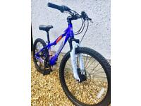 """Stunning Mongoose Evict 24"""" wheels suit ages 8-13"""
