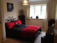 2 BEDROOM FLAT APARTMENT GATED PROPERTY LARGE GARAGE SOLIHULL TOWN CENTRE HIGH SPEC EXECUTIVE B91