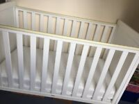 Cot with Cot Mattress