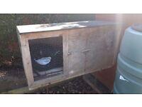 Rabbit Hutch/Pet Cage for sale