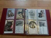 100 Vintage Postcards