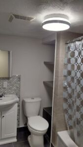 Recently Renovated 1 Bedroom Apartment for Rent
