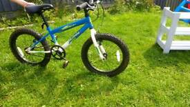 Childs bicycle for boy or girl