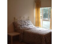 Very spacious room to rent in Bayswater