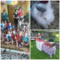 "Magician or clown Services ""With Live Animal wow"