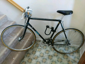 12 speed Shogun road bike -- Large Frame