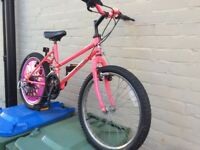 "GIrls PINK Bike -24"" - suit 5 - 9 year old"