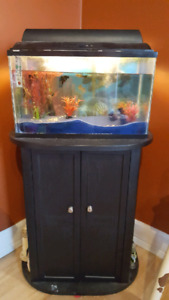10 gallon tank and stand.