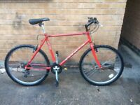 Men's Saracen LightweigHt Hardtail Mountain Bike in Good condition