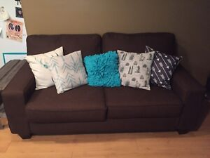 2 Year Old Brown Couch