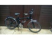 Freego Hawk electric bike