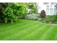 Lawn mowing - and care. I take care of your lawn as though it was mine, with care and attention.