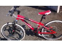 kids mountain bike FERRINI 24 SUIT 6 TO 11 YEAR OLD 24 IN HEELS 18 SPEED