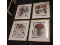 Set of 4 framed painting, canvass