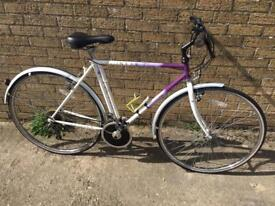 Mens Raleigh Pioneer Hybrid. Great condition, Free Lock, Lights, Delivery. Warranty