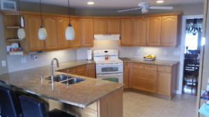 Used Kitchen Cabinets and Counter Top