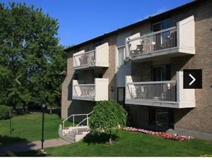Large 1 bdrm available Aug 1 or 15