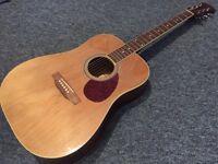 Freshman FA1-DN Acoustic Guitar