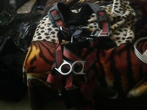 Full body harnesses