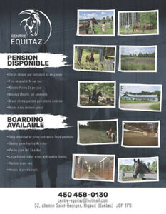 PROMOTION PENSION CHEVAUX RIGAUD
