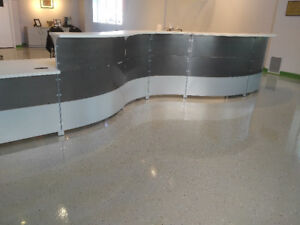 Beautiful Contemporary Front Desk