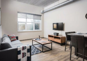 DOWNTOWN: BRAND NEW Student Apartment September to April Sublet